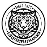 Krav Maga – Självförsvarsakadmin i Stockholm
